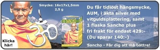 Bild på PAKET AUM hängsmycke och Sancho örtelixir