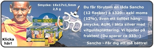 Picture of PAKET Sancho 12 med AUM hängsmycke